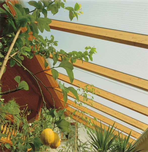 Highlux-StPl-Wintergarten-Zitrone